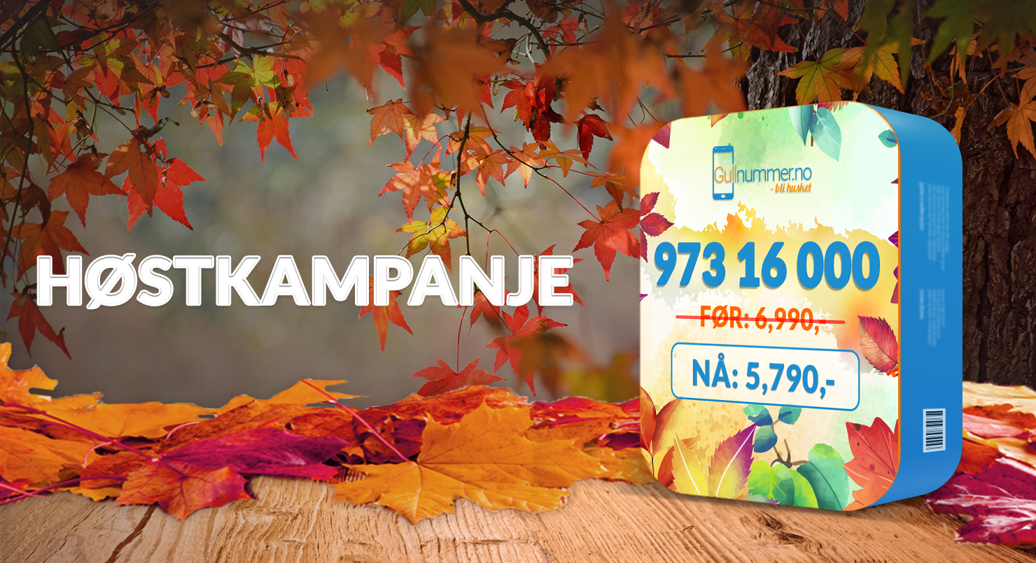 Autumn-973-16-000-1